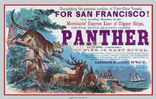 Clipper Ship - Panther (Advert)